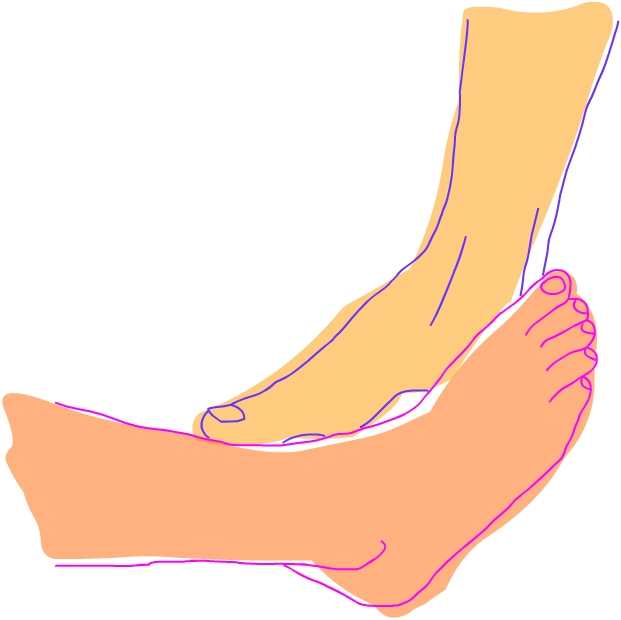 animation-feet